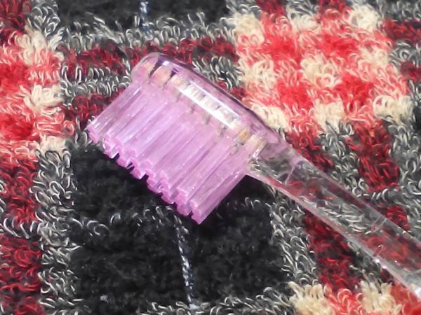 歯ブラシもけっこう染まる